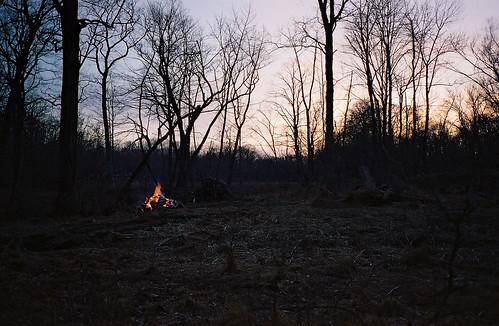 fireinthefield