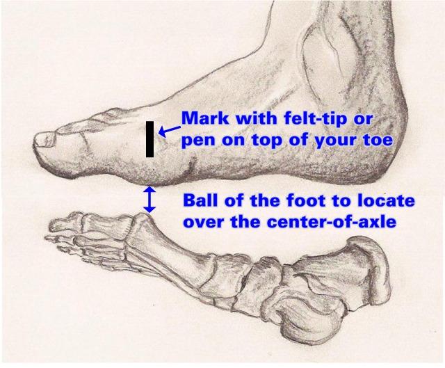 human_foot640