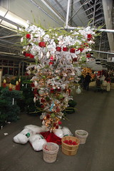 Mahoney's Christmas Garden Center, Winchester MA: Upside-down Christmas Tree (Chris Devers) Tags: garden store funny upsidedown farm massachusetts christmastree greenhouse winchester 2009 bostonist gardencenter winchesterma mahoneys artificialtree universalhub cameranikond50 exif:exposure_bias=0ev exif:exposure=0017sec160 exif:focal_length=18mm lens18200vr exif:aperture=f40 camera:make=nikoncorporation mahoneysgardencenter exif:flash=autofiredreturndetected camera:model=nikond50 mahoneyschristmasgardencenter meta:exif=1260163564 exif:orientation=horizontalnormal exif:lens=18200mmf3556 exif:filename=dscjpg exif:vari_program=auto exif:shutter_count=39006 meta:exif=1350399767
