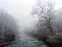 Snowfall at Will's Creek (javcon117) Tags: snowflake county trees mist snow water fog mystery creek md scenic maryland eerie fresh mystical ripples snowfall somber tranquil cumberland waterway allegany willscreek javcon117