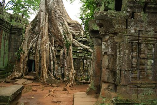 Siem Reap - Angkor
