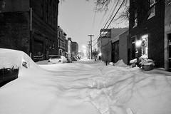 Leopard Street @ 1AM (damonabnormal) Tags: street city winter urban snow philadelphia night nikon december snowy snowstorm streetphotography dec pa nighttime 09 snowing philly wintertime blizzard phl 2009 highiso 215 d90 leopardstreet