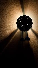 20091229_lampje