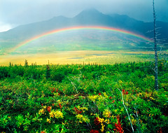 Valley Rainbow - Katmai National Park (David Shield Photography) Tags: storm mountains color nature alaska landscape nationalpark rainbow valley wilderness brownbear brooksfalls katmai cl