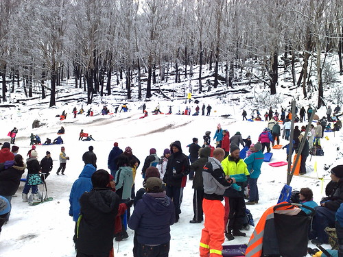 Lake Mountain toboggan run
