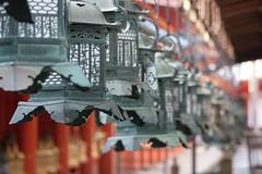 Lanterns (deadguru) Tags: japan canon temple shrine row lantern nara 30d 70200f4