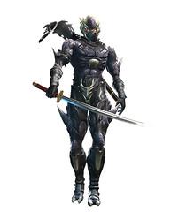 Ninja Gaiden Sigma 2 - Ryu costume Falcon