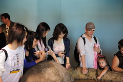DSC_3630 (Andrew Lan) Tags: sanfrancisco yiting weiting aquariumbythebay