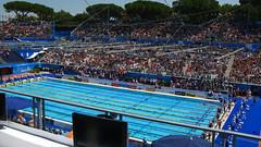 ローマ世界水泳 プール