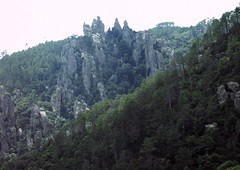 Dans la descente du sentier de l'Osu : aiguilles rocheuses en RD du ruisseau de Piscia di Ghjallu
