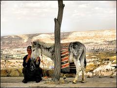 IL MERITATO RIPOSO (Loris_l@_r@na) Tags: woman tree donna bologna 1001nights albero cappadocia goreme asino turchia anziana theperfectphotographer nginationalgeographicbyitalianpeople flickrunitedaward 1001nightsmagiccity lorisphoto