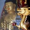 Dragon & Buddha (NowJustNic) Tags: china temple 50mm gold nikon dragon buddha swastika beijing buddhism pearl tanzhetemple tanzhesi d80