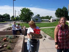 Anythink Commerce City Flower Beds (ilovemyanythink) Tags: colorado library communitygarden commercecity rangeviewlibrary estes09