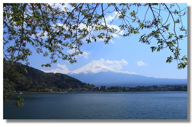 河口湖北岸看富士山
