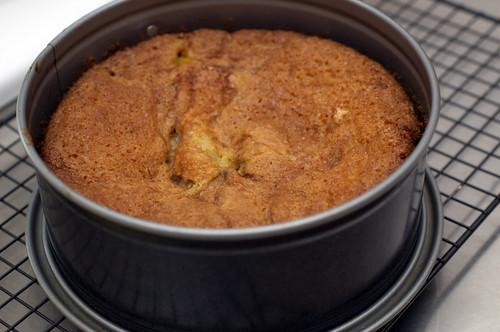 nectrarine cake