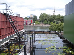 Wapping Project lily pond (duncan) Tags: restaurant artgallery wapping lilypond wappingproject dianehowse
