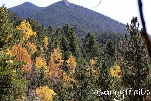 fall colors-2