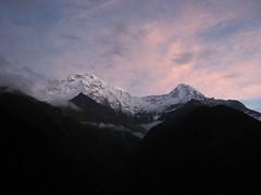 Annapurna South from Chhomrong I (boundforotherports) Tags: nepal mountains trekking trek himalaya annapurna chhomrong annapurnabasecamp annapurnasouth hiunchuli himalayamountains