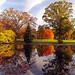 Cincinnati - Spring Grove Cemetery & Arboretum Autumn Reflection