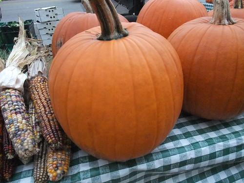 Pumpkins 10/24/09