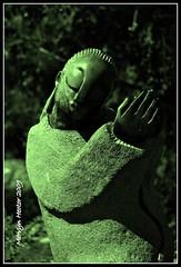 The Prayer (Mervyn Hector) Tags: sculpture thanks southafrica christ god prayer pray praying capetown lord christian picnik westerncape supplication kirstenboschnationalbotanicalgarden thankfullness theprayer opalstone gedionnyanhongo mervynhector