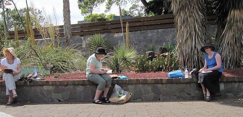 Sydney Sketchcrawl 25 Cactus Garden