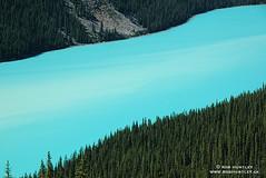 Peyto Lake (Rob Huntley Photography - Ottawa, Ontario, Canada) Tags: lake mountains nationalpark ab alberta banff rockymountains bluelake banffnationalpark peytolake huntley robhuntley robhuntleyphotography