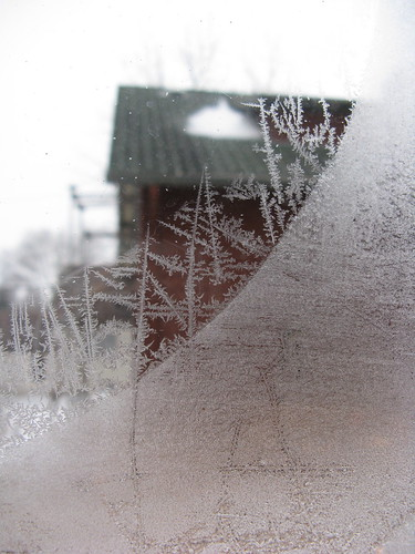 #342 - Icy Art