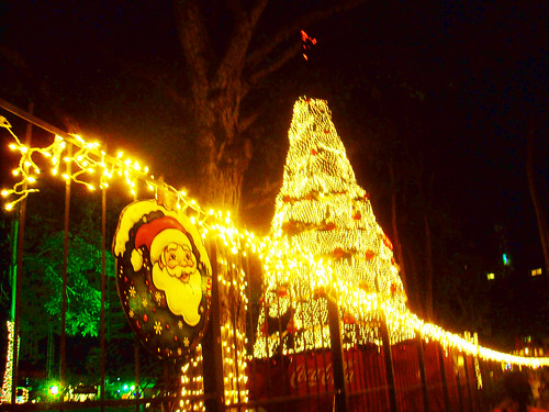 Christmas decoration in the park in Via Argentina