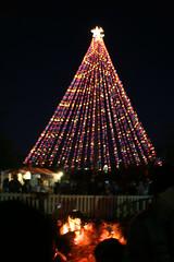 Zilker Tree & Yule Log (rickweller) Tags: family austin texas zilkertree trailoflights yulelog