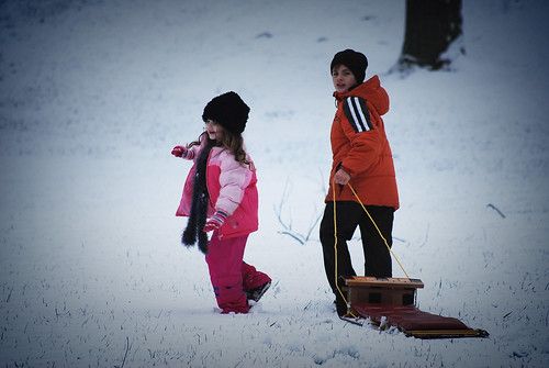 Sledding - Toboggan Fun