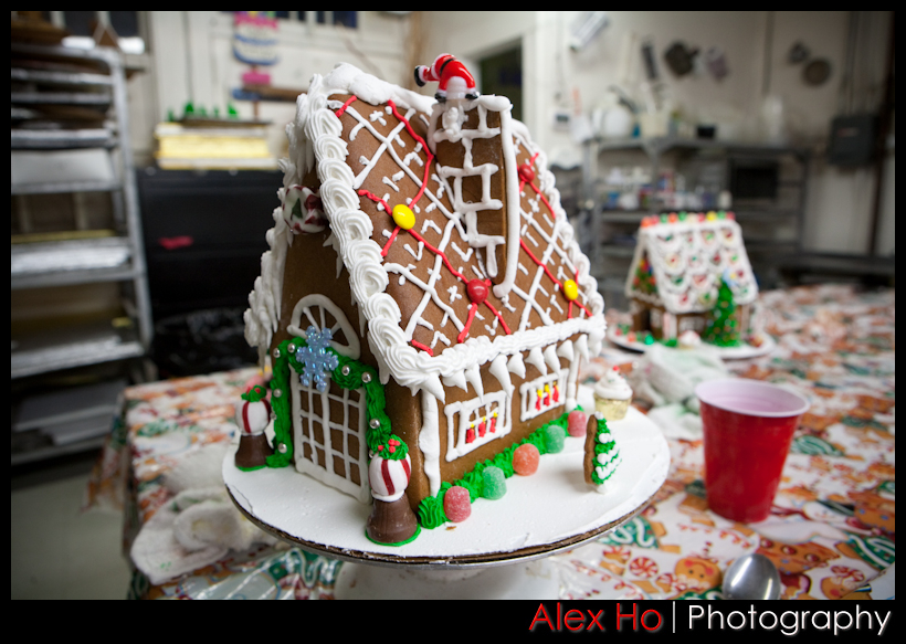 4209544151 8d3bccb2a4 o Gingerbread House