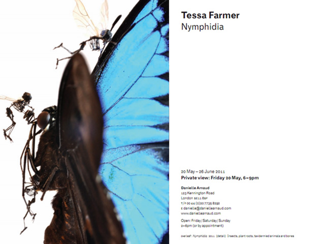 Tessa Farmer Nymphidia - Danielle Arnaud contemporary art