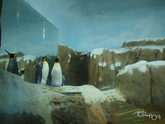 20110602酷節能體驗營 (53) (fifi_chiang) Tags: zoo taiwan olympus taipei ep1 木柵動物園 17mm 環保局 酷節能體驗營