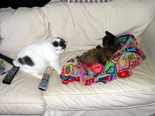 my-blanket