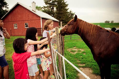 Kids Horse 2