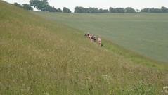 DSC01979 (edwardsgt) Tags: 2009 naturists yorkshirewolds