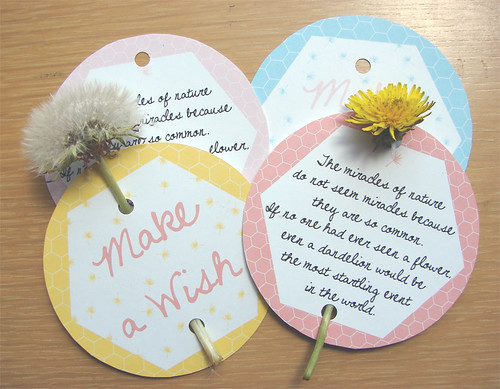 Kind Over Matter Dandelion Cards