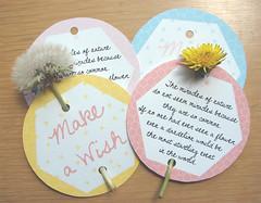 Kind Over Matter Dandelion Cards