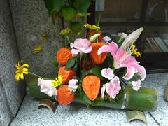 六本木 朝日神社「ほおずき市」