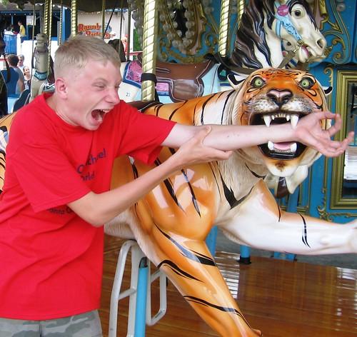 Tiger bite at Holiday World!