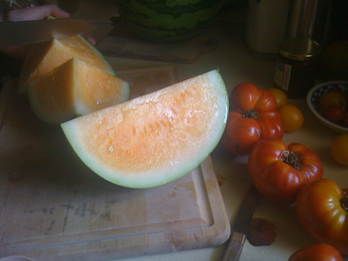 I dont have any picture of pumpkins handy, so this watermelon (and fellow cucurbit) will have to do.