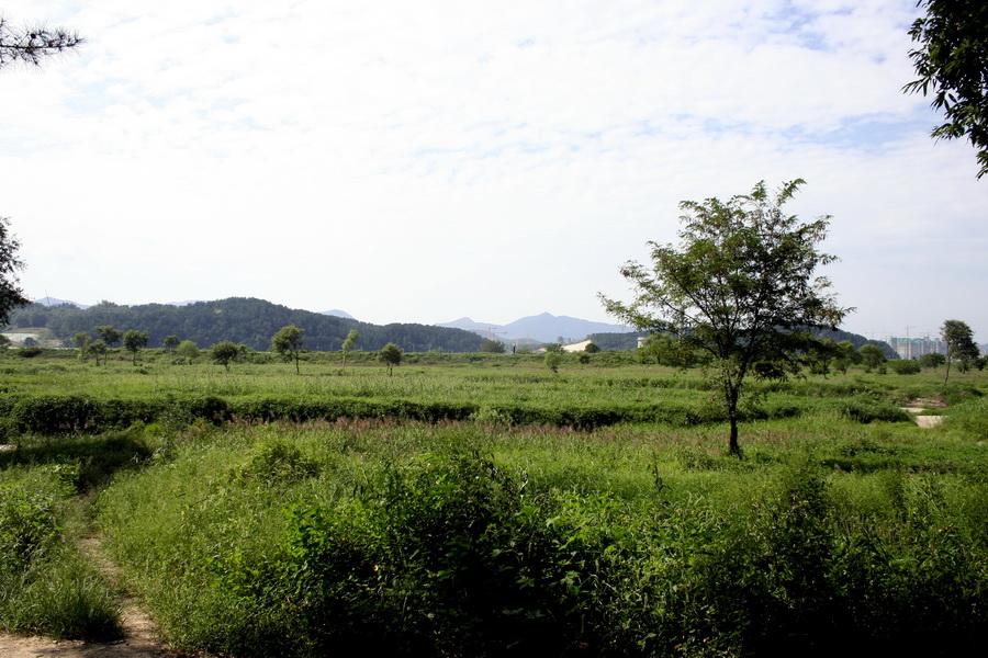 Gapcheon Valley