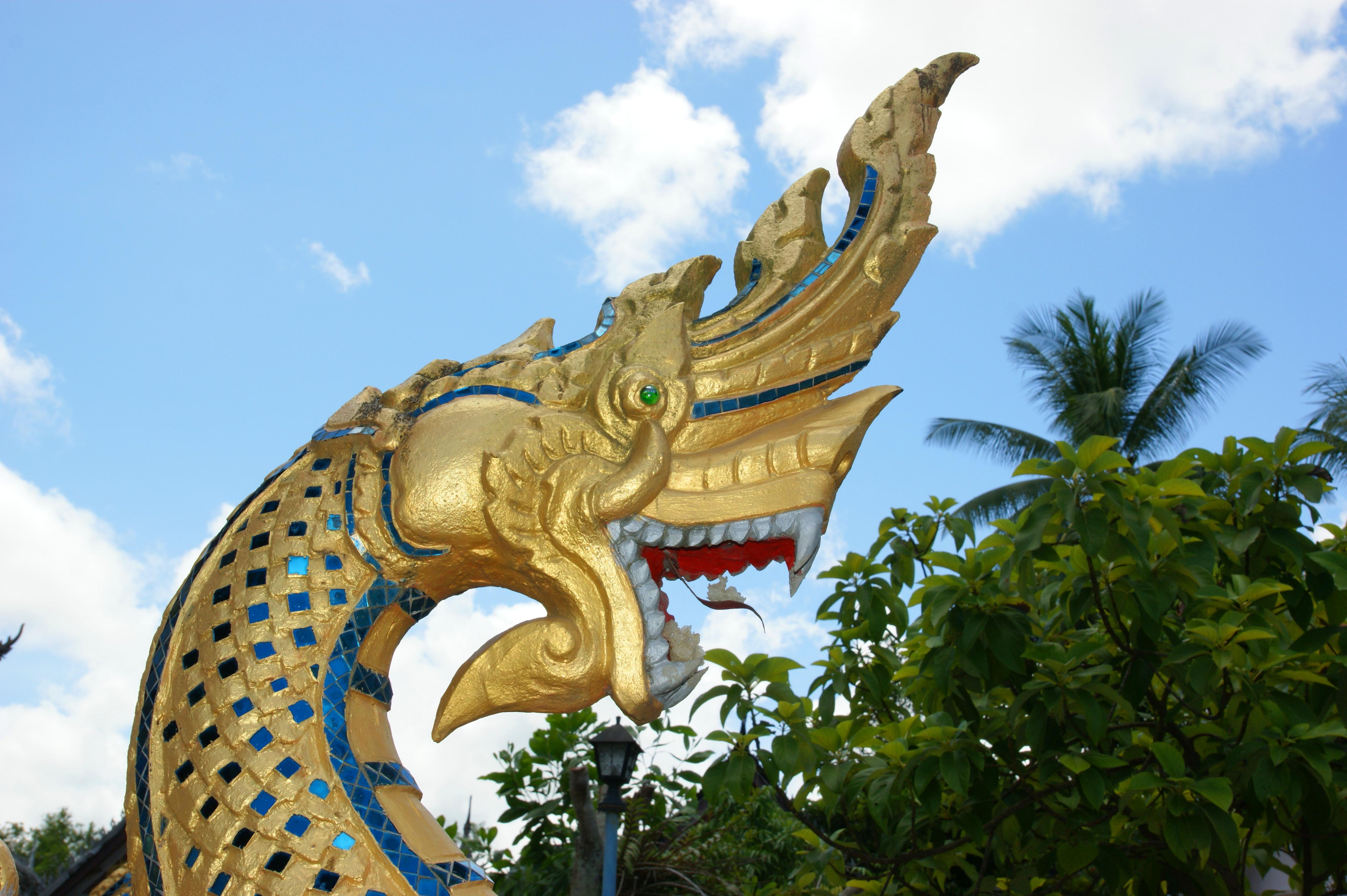 3923649484 877c8071f0 o 2009 08 30 09 03 Luang Prabang 069 Wat Pa Phay