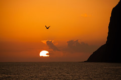 Sunset (benitojuncal) Tags: sunset sea bird sol portugal de mar cabo nubes puesta lobos madeira isla ilha camara oceano posta solpor girao anawesomeshot sgexpo03