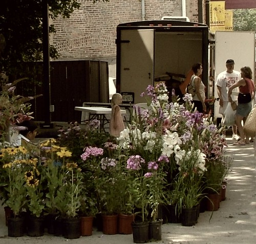 Deborah Dolen Filming at Lendenhall Market by Deborah Dolen.
