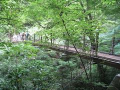 高尾山みやま橋