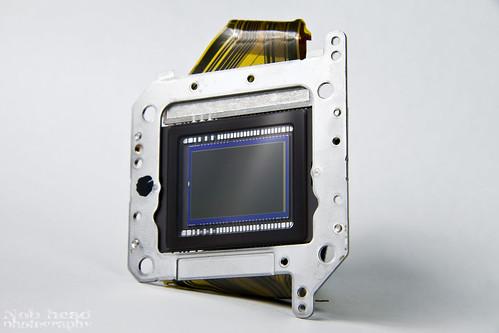 CMOS sensor of the Canon EOS 400D.