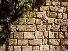 Wall (Landahlauts) Tags: muro texture textura rio wall river pared sevilla andaluca seville andalucia andalusia andalusien sville andalusie andaluz siviglia alandalus  andaluzia    andaluzja  sewilla andaluzio                            andalouzia andalusiya      ishbiliya capitaldeandalucia