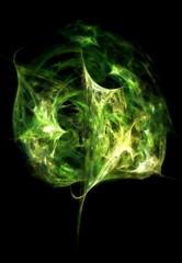 Last Leaf (Grzegorz Chorus) Tags: leaf lisahannigan krakoff